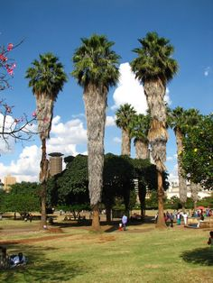 Uhuru Park, Nairobi, Kenya