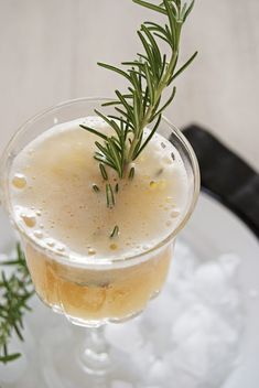 The Fontleroy: A Bourbon Cocktail This tasty bourbon cocktail features St. Germain, fresh lemon juice, simple syrup, and rosemary, and is inspired by a Louisville restaurant cocktail! Craft Cocktails, Summer Cocktails, Cocktail Drinks, Fun Drinks, Yummy Drinks, Cocktail Recipes, Beverages, St Germain Cocktail, Liquor Drinks