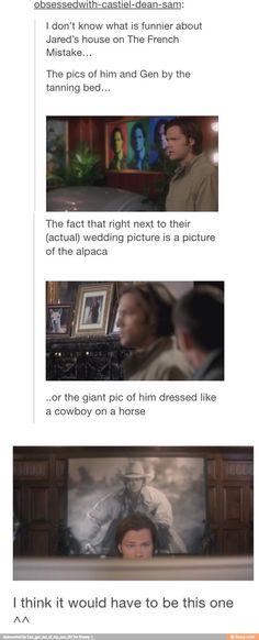 Hahahahahaha the pictures!