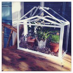 greenhouse ikea unusual kitchen garden pinterest id es serre tablette et serre. Black Bedroom Furniture Sets. Home Design Ideas