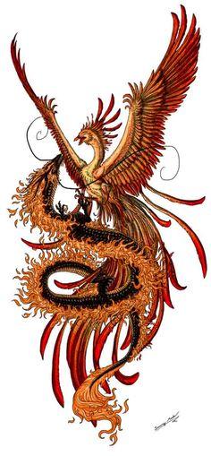 Phoenix and dragon by Sunimo.deviantart… Phoenix and dragon by Sunimo. Tattoo Dragon And Phoenix, Phoenix Drawing, Dragon Tattoo For Women, Dragon Tattoo Designs, Japanese Phoenix Tattoo, Phoenix Artwork, Japanese Dragon Tattoos, Phoenix Design, Phoenix Tattoo Design