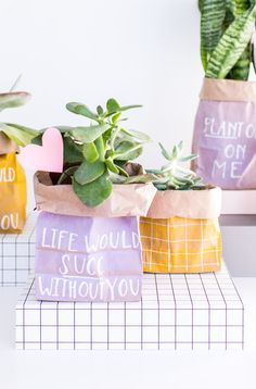 Plant One On Me: How to Make Budget-Friendly DIY Valentines (That Don't Suck) in 5 Minutes