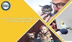 """""""Pet Love"""" #timeforpet #petlovers #petlove #animallovers #petquotes #animallover #animals #animallove #quotes #animalquotes #quoteoftheday #petcare #pet #pets #bangalore #tuesday"""