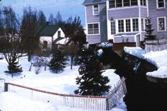 Alaska Earthquake March 27, 1964. One of the scarps bounding the graben of the L Street landslide in Anchorage. The house was undercut by su...