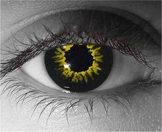 Gothika Black Wolf FX Contact Lenses