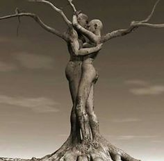 Un amor con raíces