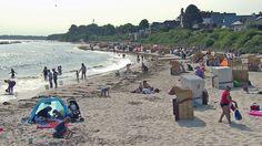 Quallen-Gefahr an Nord- und Ostsee