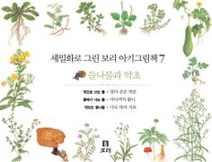 세밀화로 그린 보리 아기그림책7:들나무와 약초