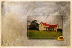 Red Roof Vacancy  18x12 by Creatography on Etsy This abandoned farm house is close to a small Georgia town called Chatsworth. The sunflower was growing on the property.