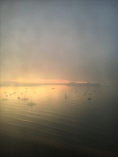 Purple morning, fog over Rangitoto