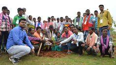 अध्ययन यात्रा पर आने वाले जनप्रतिनिधि अपने गाँव का जल, फलदार पौधा और मिट्टी लेकर आते हैं और पौधरोपण करते हैं. नया रायपुर स्थित परिसर में दंतेवाड़ा जिले के पंचायत प्रतिनिधि अपने गाँव का पौधा और मिट्टी लेकर पहुंचे. जहाँ उन्होंने पौधरोपण किया. प्रतिनिधियों ने अंजुली भरकर जल अर्पण किया. इन सबके बीच नन्हा बस्तरिया बालक उत्सुकता से निहारता हुआ.