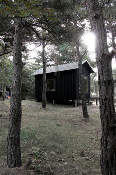 Дом с сауной для отдыха в Швеции