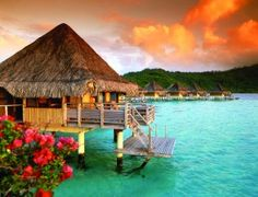My Bora Bora Bungalo over the water, with a glass floor in front of the bed.