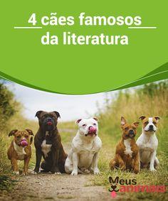 4 cães famosos da literatura  Uma das maiores #características da #literatura é possibilidade de qualquer ser vivo ser o #protagonista de uma história. É o caso dos #cãesfamosos. #Curiosidades