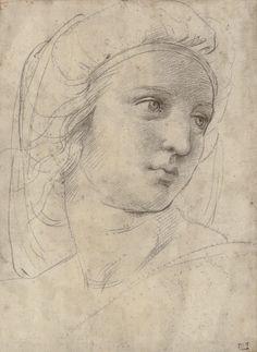 raphael-sanzio-drawings-p6thpqlr.jpg