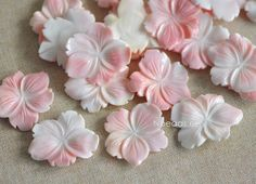 4pcs Pink Queen Conch Shell Flower Carved Cabochon 40-45mm