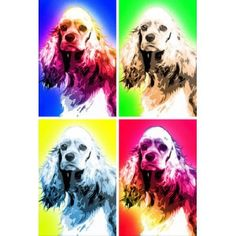 American Cocker Spaniel- Dog Print