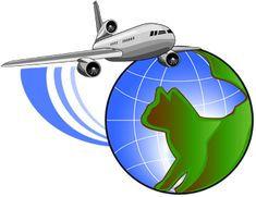 We have many clients who have taken service of transporting their pets from us.