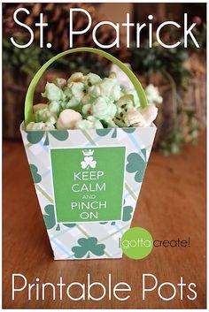 Free St. Patricks Day printable leprechaun treat pots! | Download at I Gotta Create!