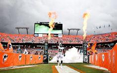 Reggie Bush Miami Dolphins V NY Jets Week 3