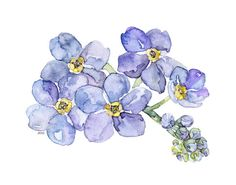 This is a fine art giclée print made from my original watercolor painting…