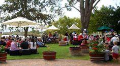 Miguel Chan Wine Journal: Harvest High Jinks at Eikendal WEINTAUFE 2014