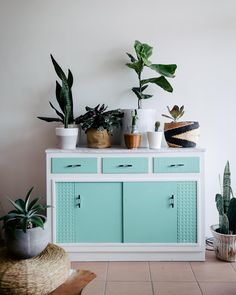 Sing to your plants  This is my last piece of vintage furniture. My savvy stunt man of a cabinet maker husband has taken over with his American oak clean timber loving. He's been mega inspired by his time working with dear friends @mrandmrswhite_ - I ain't letting this piece go.  Photo of our past sydney abode styled by @sharee_gray photographed by @alexcarlyle for @designsponge  #designsponge #plants #creative #furniture by tessguinerydesign