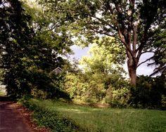 Familiar landscape #1, 2002