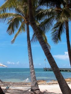 Key West..pretty sure I've sat in this very hammock at The Casa Marina Resort..take me back!