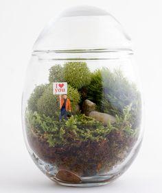 Twig Terrarium: piccoli giardini in vetro dentro casa