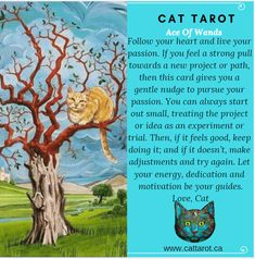 Monthly readings on my YouTube channel: www.youtube.com/c/cattarot Book your reading: www.cattarot.ca Love, Cat #tarot #tarotcards Follow Your Heart, Tarot Cards, Live For Yourself, Wands, Channel, How Are You Feeling, Passion, Feelings, Reading