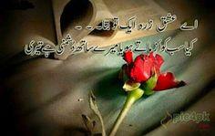 65 Best Urdu Sad Poetry Images