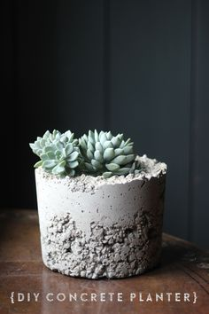 DIY concrete planter | Growing Spaces