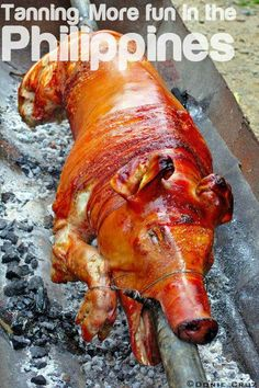 Where can I buy a Lechon in DC-VA-MD area?