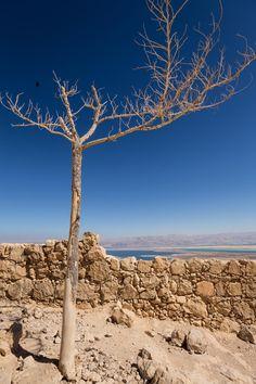 Dead Sea . Israel