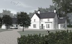 McGuigan Architects | McGuigan Architects » Oak Tree House House Front, My House, House Designs Ireland, House Outside Design, Unique House Design, Ireland Homes, Exterior Remodel, Architect House, Dream House Plans