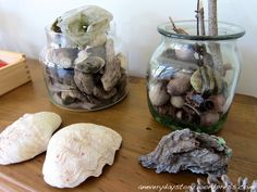 Nature's Toys: I really encourage you to bring natural materials into your home and have them readily accessible to your children. A simple nature basket. Preschool Toys, Montessori Activities, Toddler Activities, Baby Toys, Kids Toys, 4 Kids, Reggio Classroom, Inspired Learning, Natural Toys
