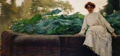 Fior di loto 1905