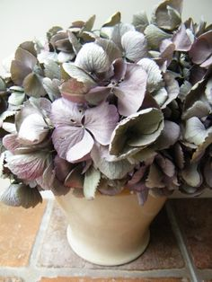 How to dry hydrangea flowers - driedflowercraft.co.uk - these are from my garden.