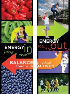 Create Life Balance, Energy In/Energy Out Poster Set  $14.95
