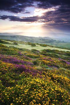 A Summer Sunrise, Hay Tor, Dartmoor National Park, UK