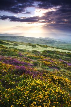 Debashis Bandyopadhya, A Summer Sunrise, Hay Tor, Dartmoor National Park, UK