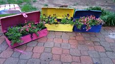 Planters made from old tool boxes Old Tool Boxes, Garden Junk, Old Tools, Planters, Ideas, Vintage Tools, Plant, Window Boxes, Thoughts