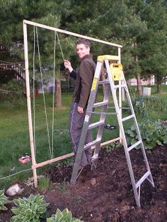 Do It Yourself Garden Trellis Designs You may have read many article related to DIY garden trellis i Hops Trellis, Bean Trellis, Tomato Trellis, Cucumber Trellis, Diy Trellis, Trellis Design, Garden Trellis, Trellis Ideas, Pole Beans Trellis
