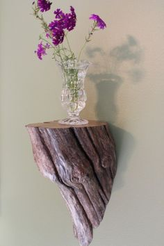 Driftwood Shelf. Wow! Looks like it's growing out of the wall.