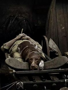 A Faithful Partner Military war dogs War Dogs, Love My Dog, Military Working Dogs, Military Dogs, German Shorthaired Pointer, Dog Rules, Mundo Animal, Hunting Dogs, Service Dogs