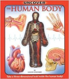 Uncover the Human Body: An Uncover It Book: Luann Colombo, Jennifer Fairman: 9781571457899: Amazon.com: Books