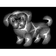 String Art Fun Shih Tzu puppy Pattern