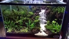 Slideshow and text commentary of the build process of my DIY aquarium background.