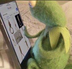 Funny Kermit Memes, Cartoon Memes, Cute Memes, Funny Relatable Memes, Gavin Memes, Sapo Meme, Memes Gretchen, Memes Lindos, Frog Meme